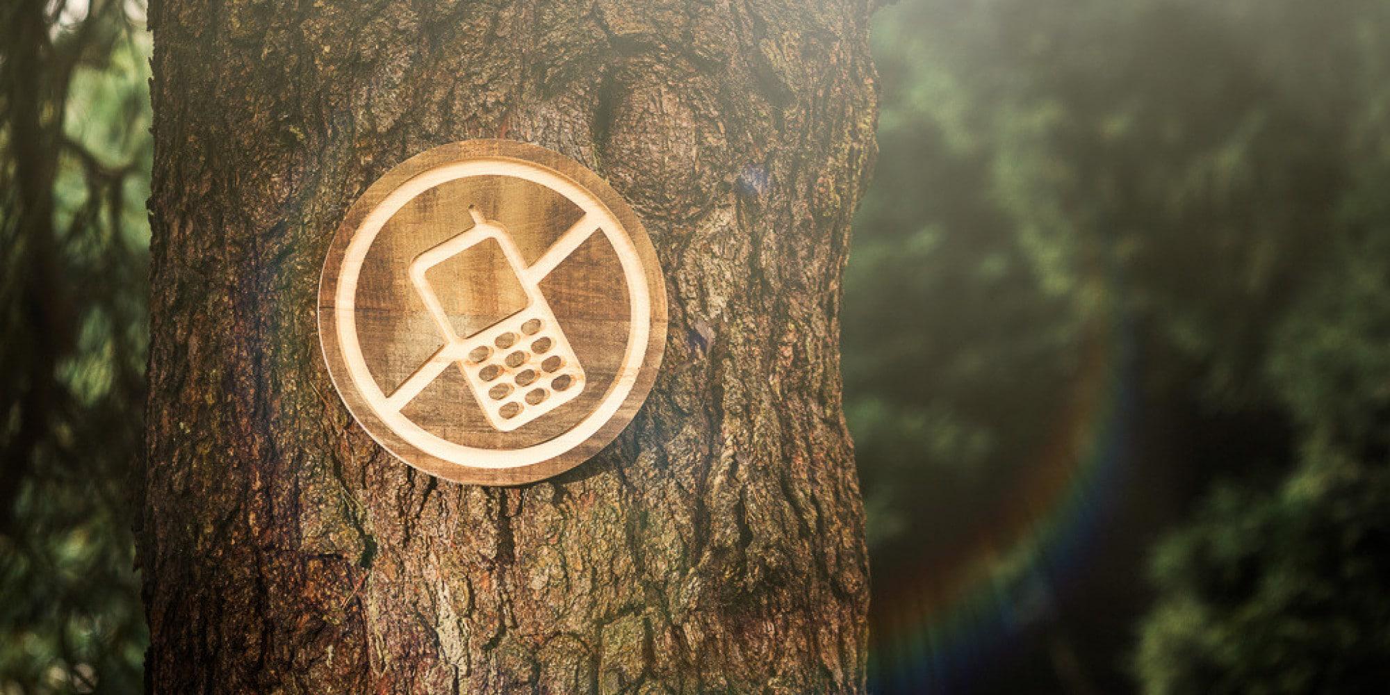 cos'è la digital detox: cartello con telefono offline su albero